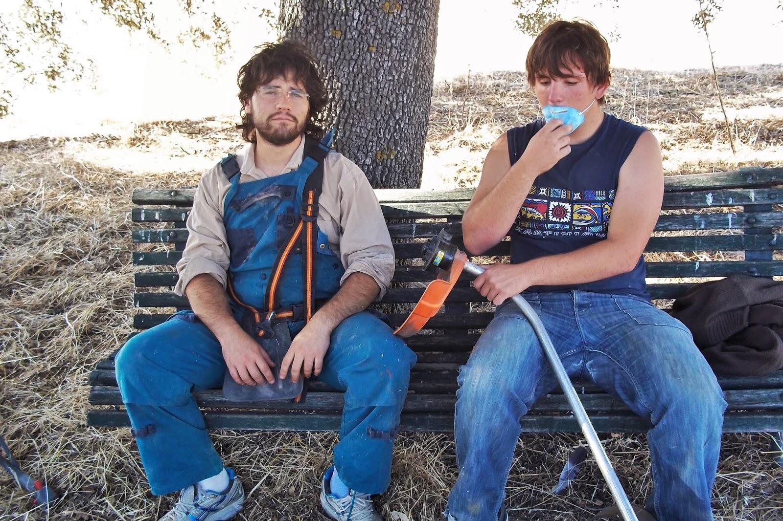 Los Olivos, vita di campagna, wwoofers, max, simone dabbicco, tagliaerbe, giardinieri, volontari