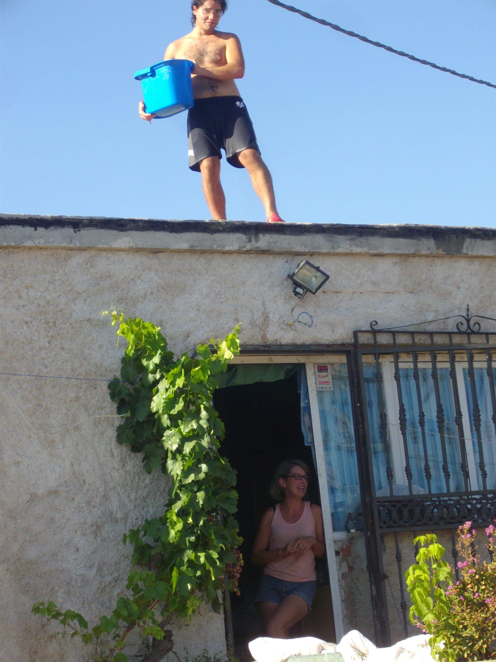 Wwoof: l'esperienza a Los Olivos