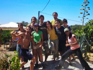 wwoof, wwoofing in Spagna, volontari, vitto e alloggio, team, squadra, amicizie, esperienze, scambi culturali, alla pari