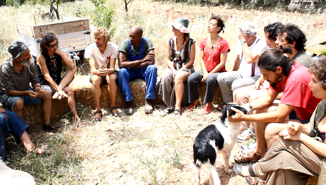casina settarte, permaculture center, permaculture in Italy, volunteer in Apulia, wwoofing in Apulia, wwoof free contact