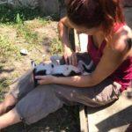 volonturismo in Bulgaria
