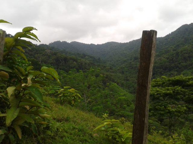 Colombia con lentezza: le foto