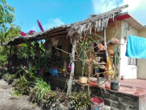 ospitalità a Zanzibar