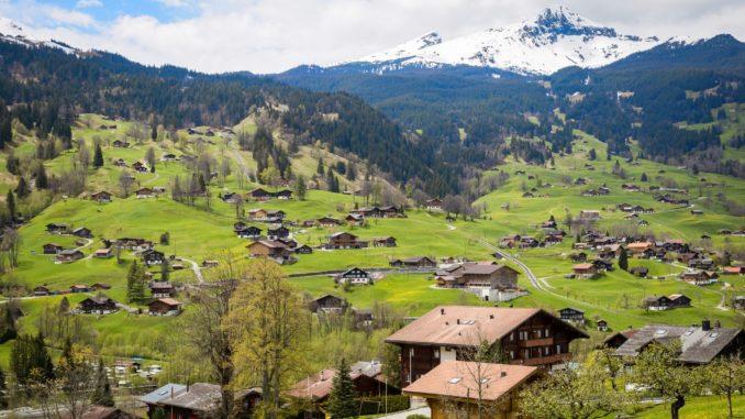 permacultura in svizzera - volonturismo annuncio