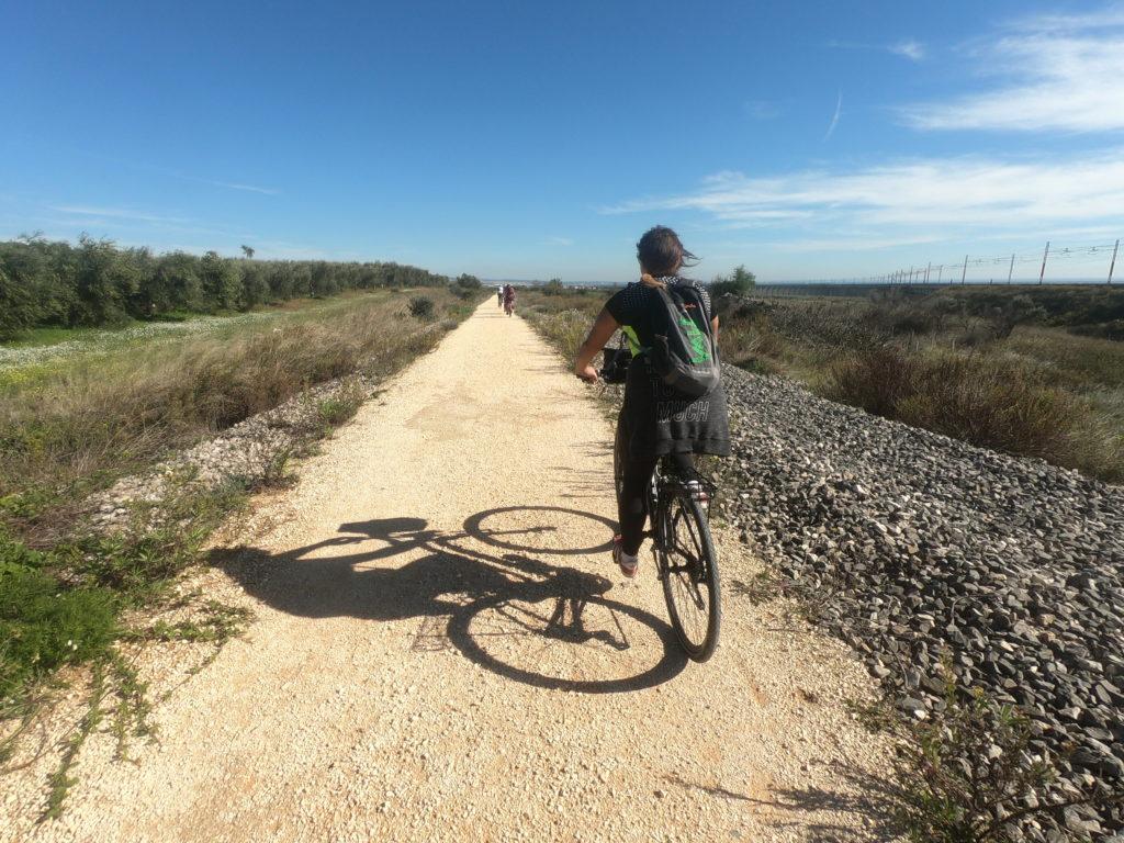 Pedalare in Puglia, guida e itinerari per tutti.