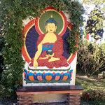 wwoofing, wwoofer, pomaia centro buddista
