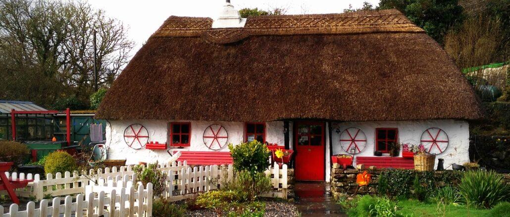 Irlanda, Ireland, wwoof, fattoria, volontariato, volonturismo, viaggiare con lentezza
