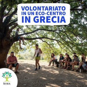 esc, corpi di solidarietà europeo, programmi di volontariato, sci, servizio civile, pocket money., youth, giovani, volonturismo