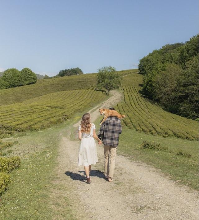 campagna, natura, coppia, cane, viaggiare con lentezza, stili di vita alternativi