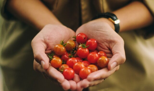 orto biologico, autosufficienza, stili di vita alternativi, pomodorini, frutta, verdura, bio, rivoluzione