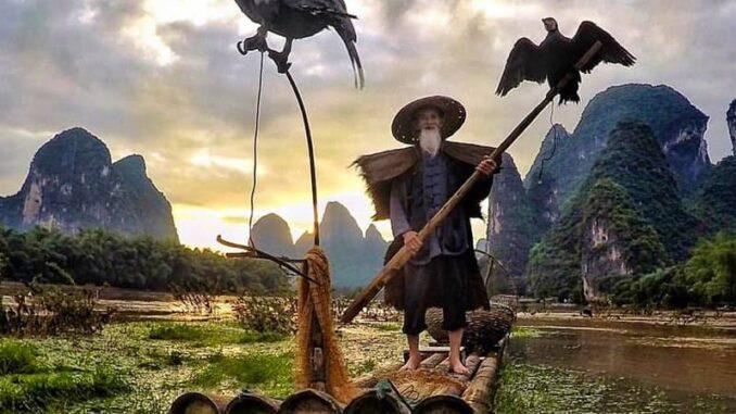 cormorano, cina, slow travel, tradizioni, antropologia, pesca, caccia, tradizionale, tribù, antico, slow
