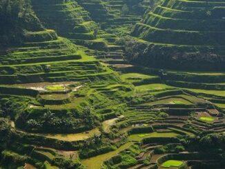 Filippine, slow travel, terrazzamenti, viaggiare con lentezza, viaggio lento, viaggiatori lenti, meraviglie del mondo, opere della natura. agricoltura tradizionale, antropologia
