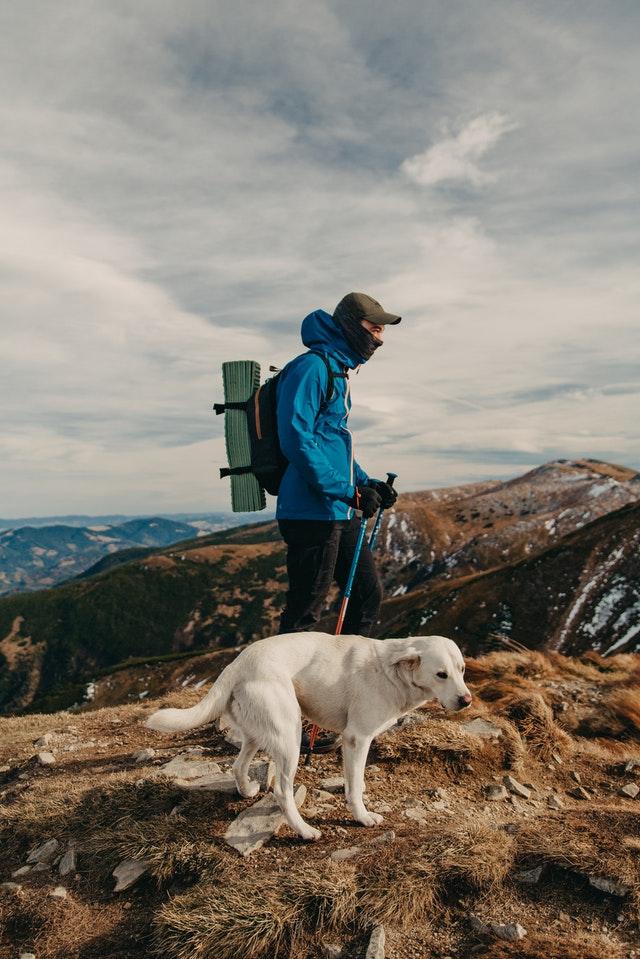 viaggiare con lentezza, viaggio lento, slow travel, viaggiare con il cane, zaino in spalla, backpacker, escursioni, svezia con lentezza, turismo lento
