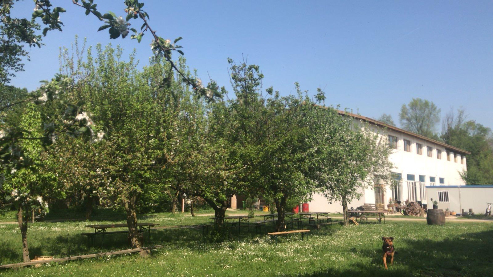 fattoria biologica, scambio di ospitalità, vitto e alloggio, fattoria didattica, sociale, workaway, helpx, wwoof, volonturismo,