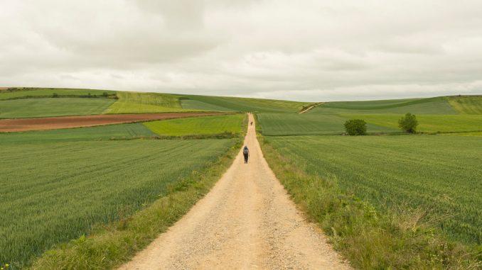 cammino, cammini, viaggio lento, viaggiare con lentezza, michele bosio, storie, pellegrini, cambiare vita, lasciare tutto, ricominciare da zero