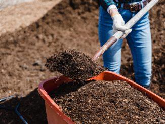 concimazione, compostaggio, contadina, fattoria biologica, autosufficienza, imparare a fare l'orto, autoproduzione